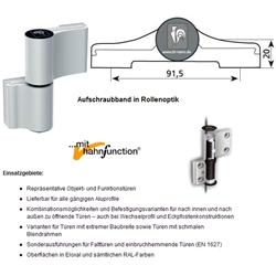 Weiß RAL 9016 Türband HAHN 4-2-teilig 20mm//91,5mm//58mm mit Ankerschrauben